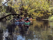 Kayaking Silver River in Silver Springs State Park