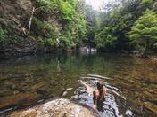 Paradise swimming hole