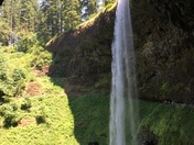 Hiking in Silver Falls State Park, OR