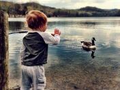 Hi Goose!