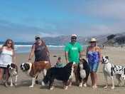 Big Dog Club Goes Camping