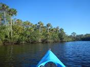 Cruisin the Loxahatchee River