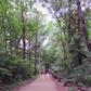 Hike close to nature