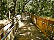 Follow that Trail