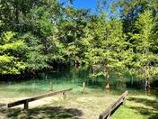 Relaxing Florida Springs