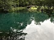Blue Hole @ Florida Caverns State Park