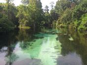 Pristine Florida