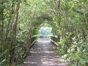 Florida Nature's Way