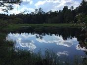 Beatiful lake and reflections