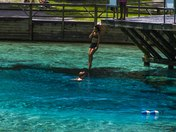 Leap of Faith  at Gilchrist Blue Springs
