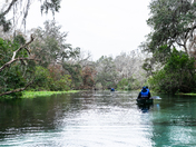 Peacefully kayaking along Ichetucknee River