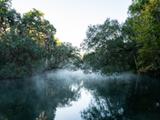 Foggy blue springs