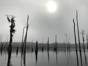 Ocheesee Pond in the morning
