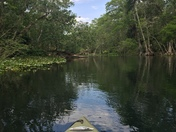 Paddle on the Silver River