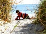 Winter Sun in the Sand