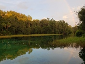 Rainbow's Reflection