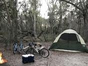 Bike and Hike Christmas in Ocala
