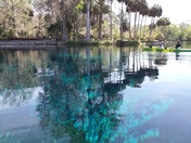 Crystal clear Silver Springs