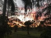 Explosive Sunrise