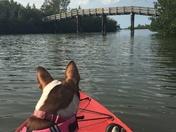 Kayaking in Sebastian Florida