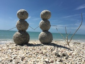 3rd Place Winner: Winter at Don Pedro State Park