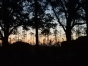 Sunrise at HHP