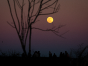 Moonrise over Payne's Prairie