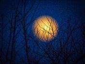Mysterious Full Moon