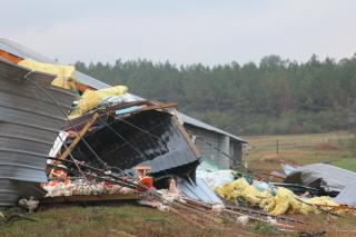 Tornado Damage/ North Jones County Mississippi