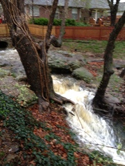 Waterfall in our back yard
