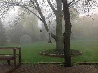 Foggy Morning in Highland Park, IL
