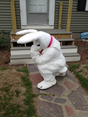 Tebowing Easter Bunny