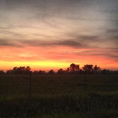 Sunset in the Farmlands of North Carolina