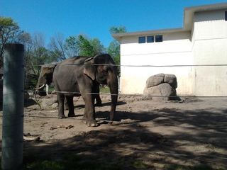The Topeka Zoo