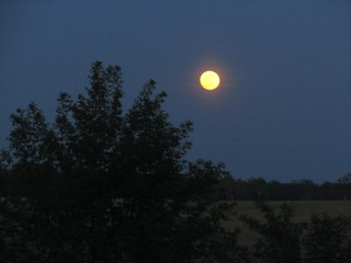 Moon over Mt. Gilead, Ohio