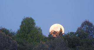 The supermoon from Northern California