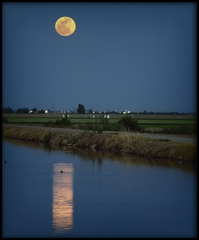 Imperial Valley Moon