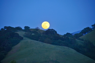 Moon in Pleasanton