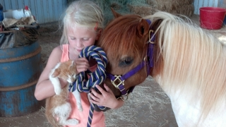 Cameron, her pony Spank and her kitten