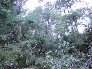 Damage from Storm 6/29/2012
