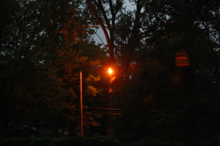 Power line sparks and burns a tree during Ohio storm Monday