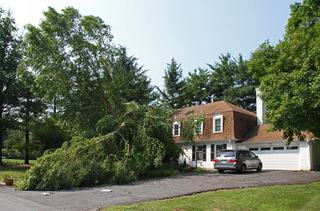 June 29, 2012 storm, Montgomery County