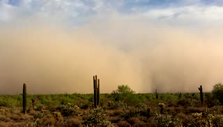 Haboob in north Scottsdale AZ