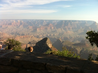 UReport Grand Canyon