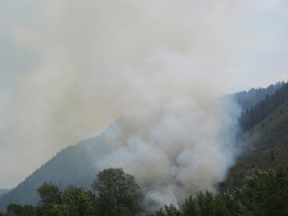 Fire in Daniels Canyon
