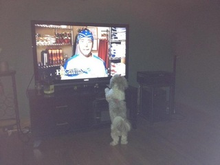 Lexi loves chef justin hells kitchen