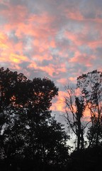 Beautiful sky! Taken in Easley