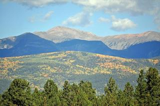 Fall Foliage--Angel Fire, NM