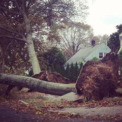 Hurricane Sandy Levittown NY