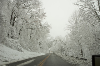 Hurricane Sandy - Davis, West Virginia